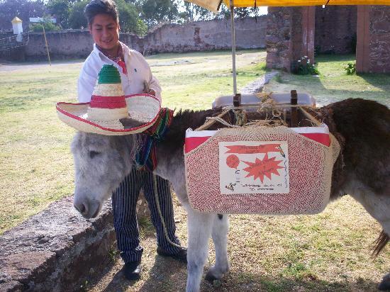 Amealco de Bonfil, المكسيك: Mexico La Muralla el Burro con el Alipus