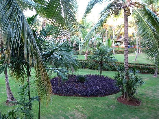 Viva Wyndham Dominicus Beach: The view from our balcony