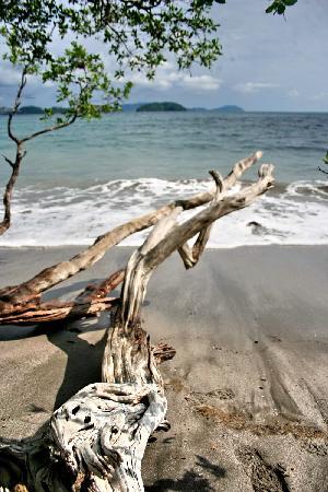 โรงแรมบาเฮียเอสเมรัลด้า: Playa Dantita