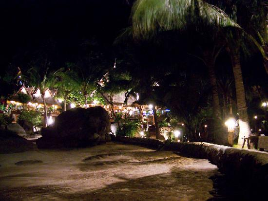Koh Tao Cabana: night