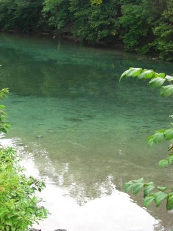 Kempten, เยอรมนี: can you believe how clear that water is??!