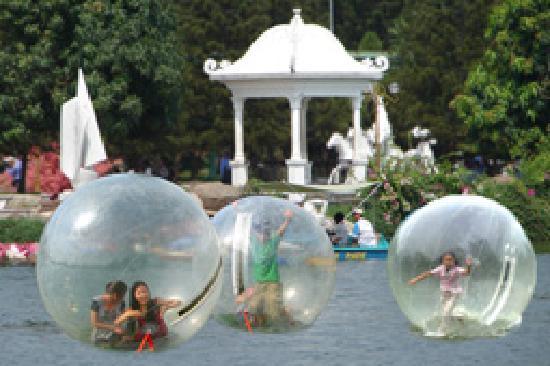 Dam Sen Water Park: water ball