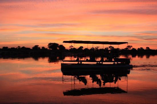 Ndhovu Safari Lodge: passing guests