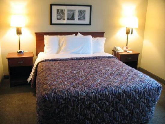 AmericInn Lodge & Suites Charlevoix: All room tastefully decorated