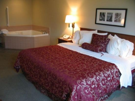 AmericInn Lodge & Suites Charlevoix: Many suite options available