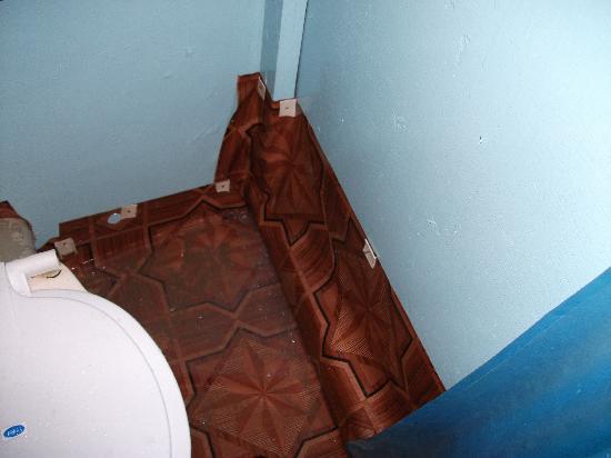 Om Shanti: Shower drain hole - it didn't work so the bathroom was always flooded