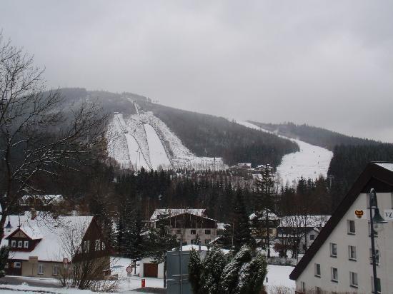 Hotel Bily Horec: Hotel View