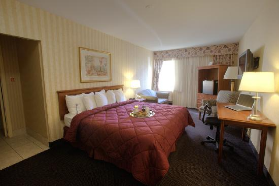Comfort Inn Toronto Airport: Room with King Bed