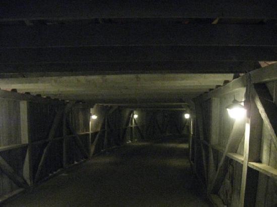 Birch Ridge Inn: Bridge 2