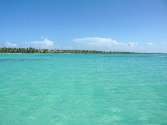 Piscine naturelle trop fort picture of isla saona for Piscine naturel