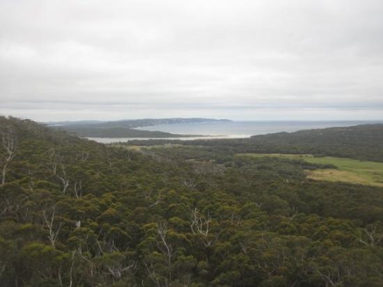 William Bay National Park, Australien: Pan shot from Monkey Rock