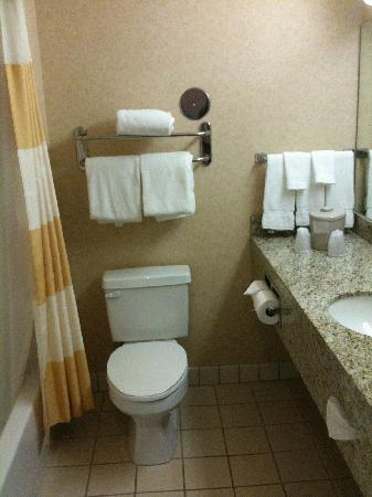 Fairfield Inn & Suites Rancho Cordova: bathroom