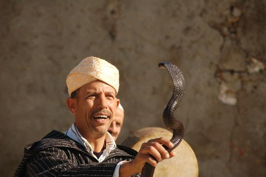 Said Private Day Tours : Snake Charmer