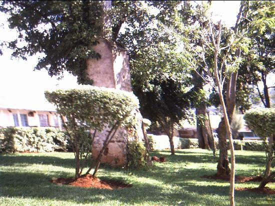 Methodist Guest House: Part of the grounds