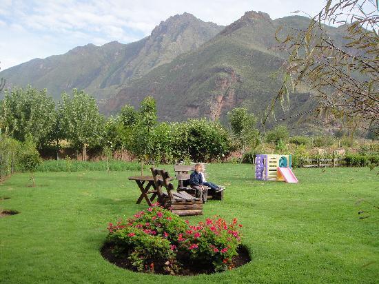 Melissa Wasi: the nice garden