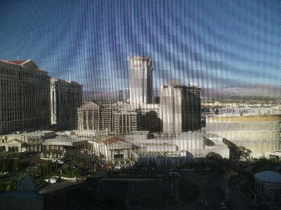 Flamingo Las Vegas Hotel & Casino: Not bad for $60!