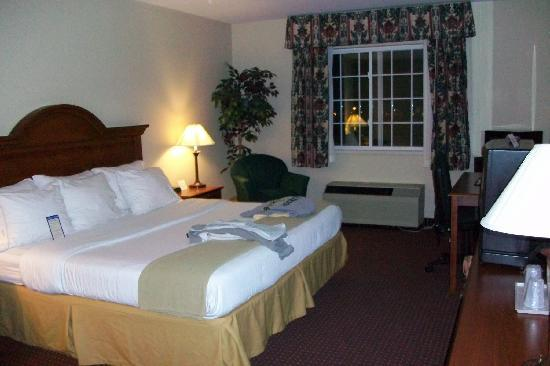 Dollinger's Inn & Suites: spacious king room