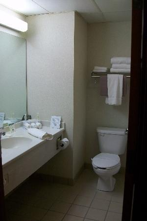 Dollinger's Inn & Suites: bathroom