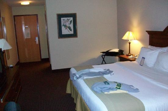 Dollinger's Inn & Suites : another view of the room