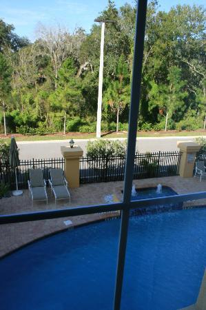 La Quinta Inn & Suites USF (Near Busch Gardens): View of the pool from the room