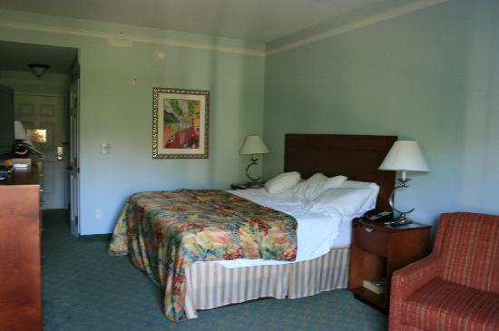 La Quinta Inn & Suites USF (Near Busch Gardens) : Room