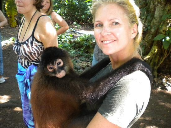 Costa Rica Fishing and Eco Adventure Tours at Crocodile Bay Resort : Monkey