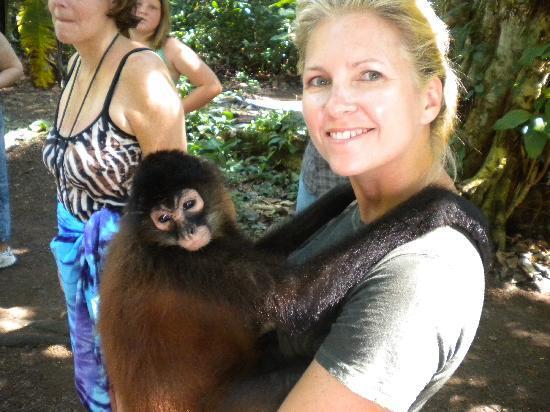 Costa Rica Fishing and Eco Adventure Tours at Crocodile Bay Resort: Monkey