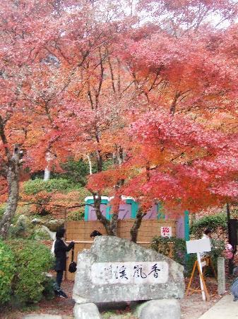 Korankei : 香嵐渓広場前