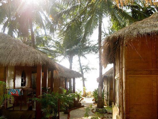 passage from our hut towards the beach picture of om sai beach rh tripadvisor co uk