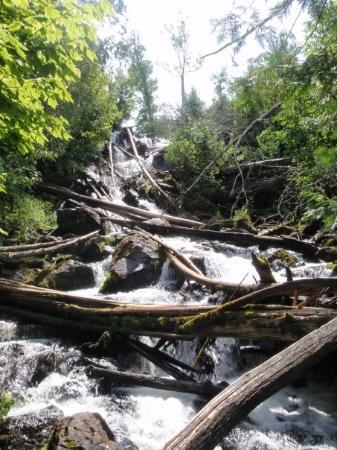 Voyageurs National Park, MN: We discovered more falls further up, but downed trees made them less fun.