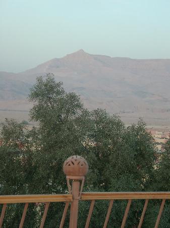 Desert Paradise Lodge: Blick von der Dachterasse im Morgenlicht gegen die westliche Wüste