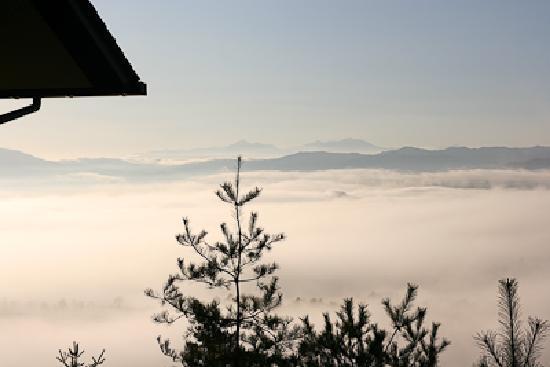 Fine View Muroyama: 日が差して気温が上がり、一面の雲海になりました