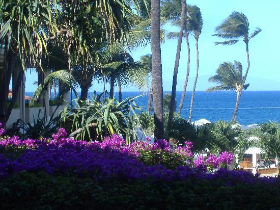 Four Seasons Resort Maui at Wailea: view of ocean