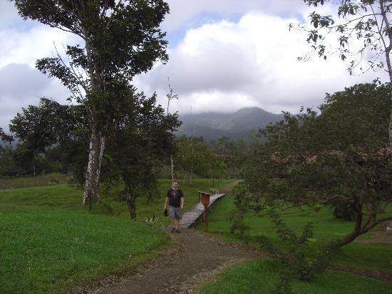 La Anita Rainforest Ranch: path to the cabin