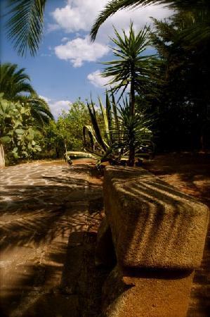 Hotel Villa Soles: Giardino