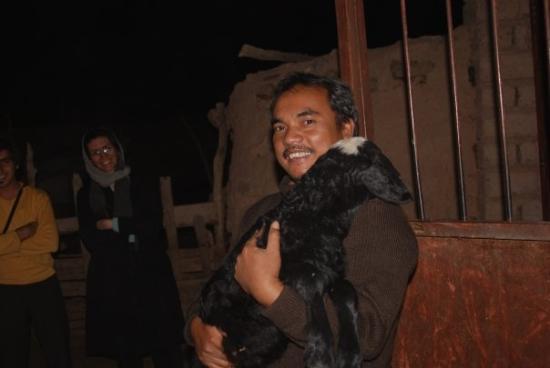 Garmsar, Iran: Di peternakan kambing, Provinsi Gamsar Iran, bersama Maryam Rahmaniam