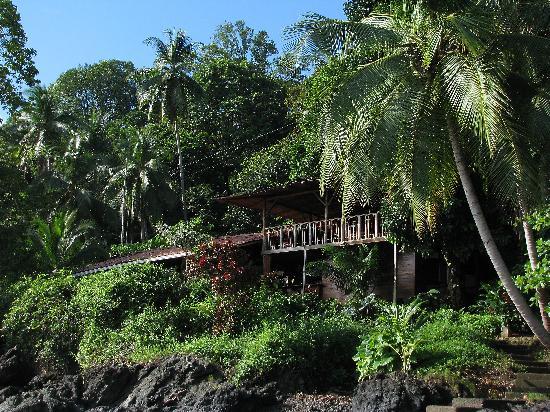 Jinetes de Osa Hotel: Jinetes tucked into the trees