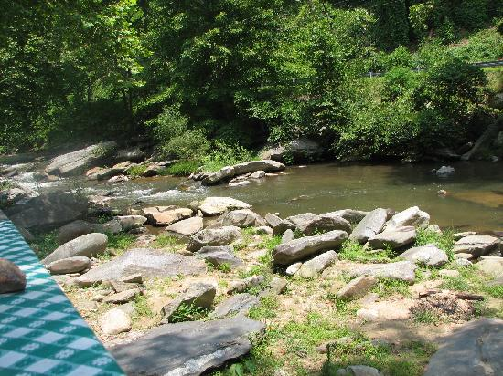 Bat Cave, นอร์ทแคโรไลนา: View of Rocky Broad River Fron the Sunflower House Cabin's Rear Porch