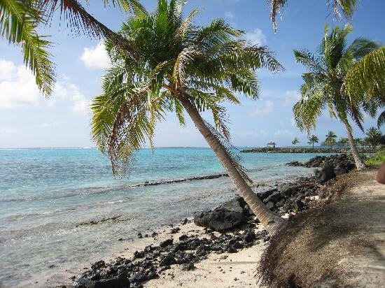 Samoa: The drive along the coast of Savaii