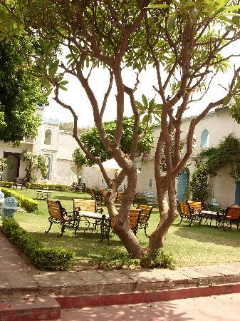Nalagarh, India: The lawn in front of restaurant