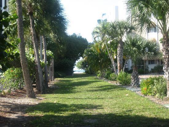 Dolphin Inn: path to beach