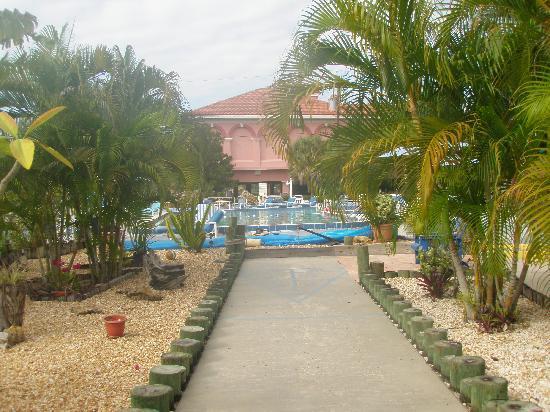 Dolphin Inn: pool, shuffleboard, groomed gardens...