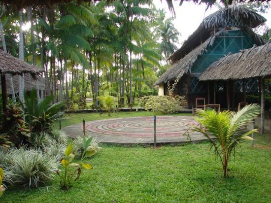 Isla Tigre, Venezuela: Bar-Comedor