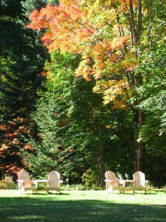 Buttonwood Inn on Mount Surprise: Fall Garden Adirondack Chairs