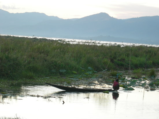 Myanmar Treasure Inle Lake : View at sunset from our deck.
