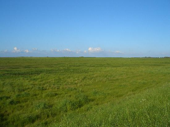Landgasthof Rentoft Krug: Blau und Grün so weit das Auge reicht