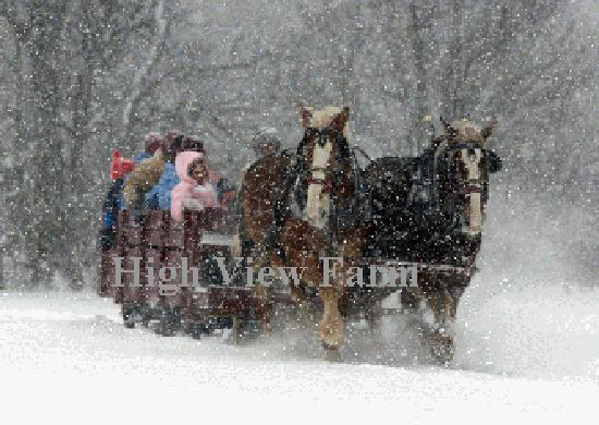 Harrison, เมน: Nostalgic Sleigh ride at High View Farm