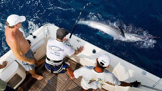 Phuket, Thailand: Wahoo Big Game Fishing