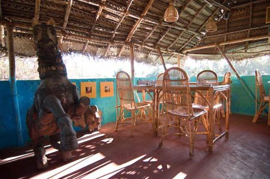 Gecko Cafe: View into the cafe, room 1