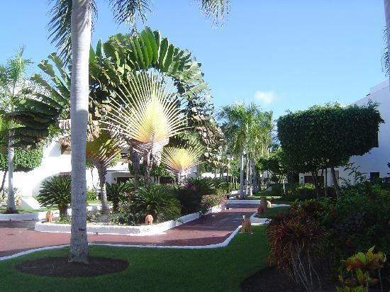 Occidental Grand Punta Cana: Jardin